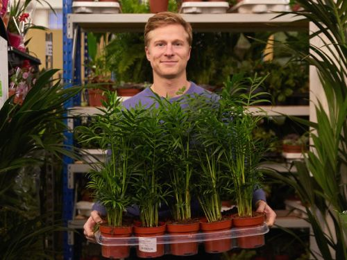 The head of marketing for a UK urban-gardening startup explains how strong brand recognition helps him grow his team