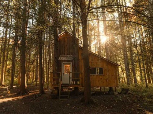 19 picturesque Adirondack Airbnbs, including an enchanting tree house, lakefront cabins, and even a fairy tale castle
