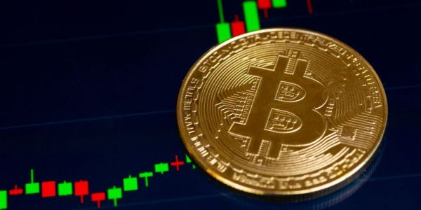'Bet on Bitcoin's inevitability': Here's what 5 crypto experts say about its price hitting an all-time high near $20,000 this week