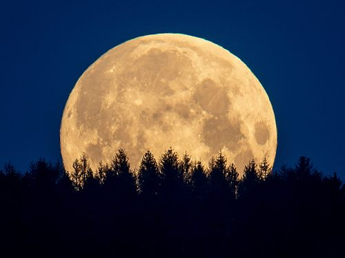 A rare Blue Blood Moon rises on Halloween. Here's what that means