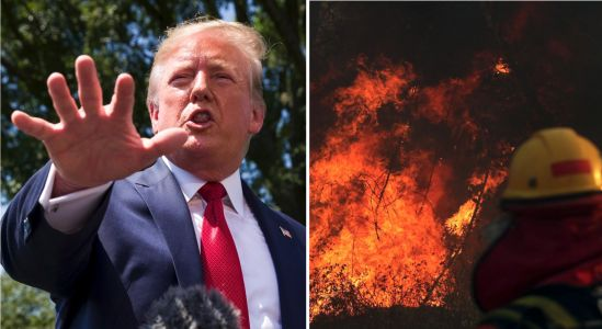 Trump volunteers US to 'help' with fires in the Amazon after conversation with Brazil President Bolsonaro, who has been slow to fight them