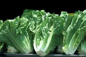 Romaine lettuce recalled nationwide due to E. coli bacteria outbreak
