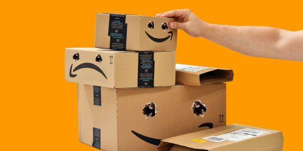 Amazon's in-house delivery network is about to face the ultimate test this holiday season as the retail giant doubles down on competing with UPS and FedEx
