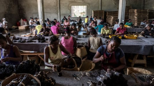 PHOTOS: Vanilla Boom Is Making People Crazy Rich - And Jittery - In Madagascar