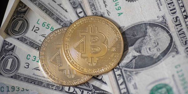 Bitcoin ownership has tripled in the US since 2018 - but 60% of investors view the cryptocurrency as a high-risk bet, survey finds